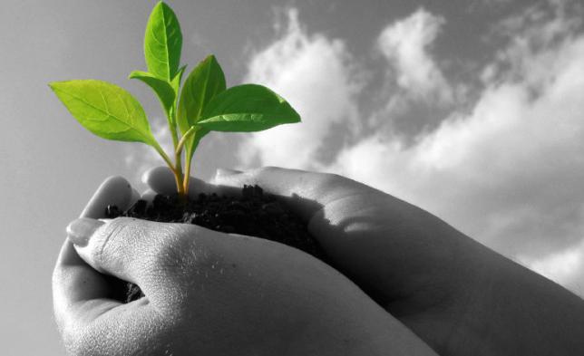 Etra e l'Educazione Ambientale con Soulcial